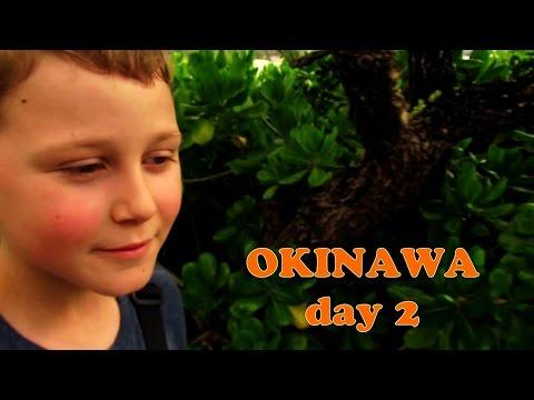 Japan Travel   Okinawa 沖縄 Trip Day 2 Part II Busena Marine Park