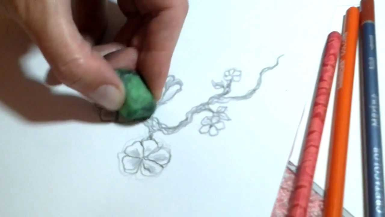 How To Draw Small Sakura Flowers Tattoo Design ™�♥♥♥♥♥♥♥♥  Youtube