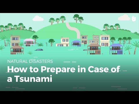 How to Prepare in Case of a Tsunami | Disasters