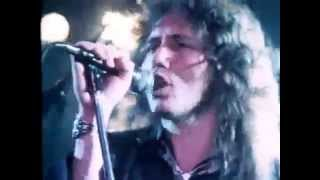 Whitesnake Don