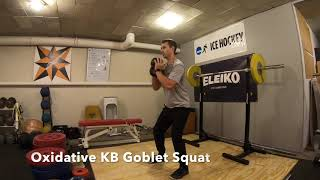 Oxidative Squat (3 Variations) | Neuro Explosion