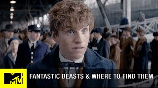 Fantastic Beasts and Where to Find Them (2016) Trailer | Eddie Redmayne, Colin Farrell Movie | MTV