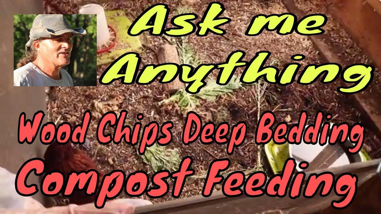 Ask Me Anything Wood Chips In En Coop