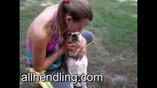 Показ зубов - обучение щенка