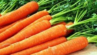 Посадка и выращивание семян моркови в домашних условиях(, 2016-04-25T17:32:20.000Z)