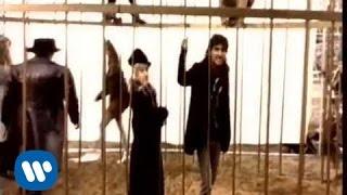 Смотреть клип Ligabue - Lo Zoo È Qui