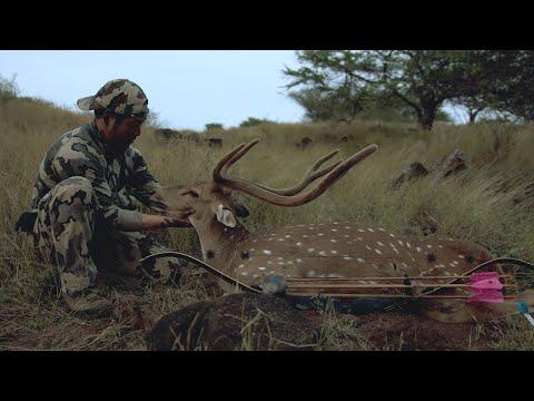 Lanai, Hawaii Axis Deer 2015