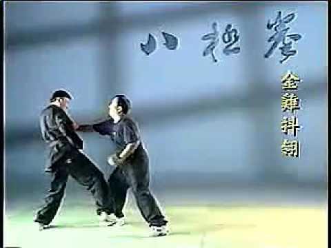 武壇八極拳 Wu Tan Jin Liyan