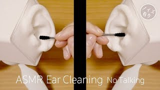 [ASMR] Both Ear Cleaning#5 / No Talking