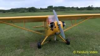 hangar 9 piper j 3 cub 40