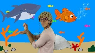 Baby Shark + More Nursery Rhymes and Kids Songs For Babies, Children and Toddlers (Live Stream)