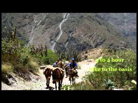Arequipa Trekking colca Peru