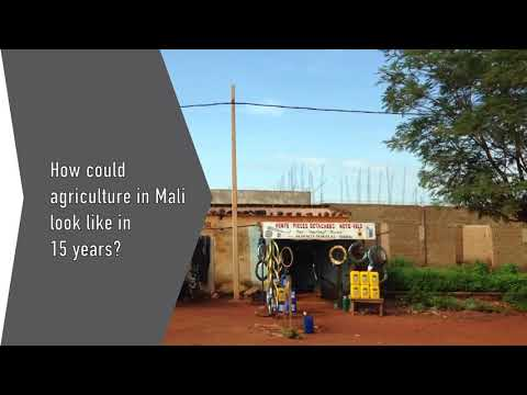 Mali has a big potential in agribusiness