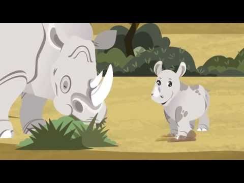 Tớ là Tê Giác Bé nhỏ--I'm a Little Rhino
