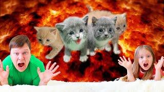 Пол это Лава от Милли - the floor is lava | История про спасение котят
