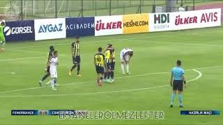 Fenerbahçe 2-0 CSıkSzereda Maç Özeti 15/07/2021