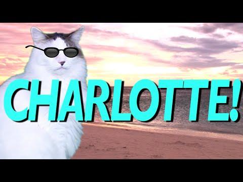 HAPPY BIRTHDAY CHARLOTTE! - EPIC CAT Happy Birthday Song