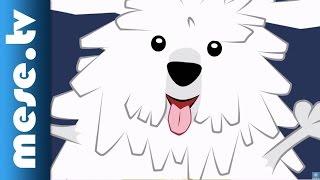 Kalap Jakab: Komondor (gyerekdal, animáció) | MESE TV
