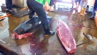 2013 5 12 返鄉並到東港鮪魚季時逢宰殺黑鮪魚實況錄影