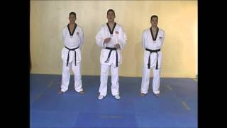 Taekwondo WTF. Техника ударов ногами.