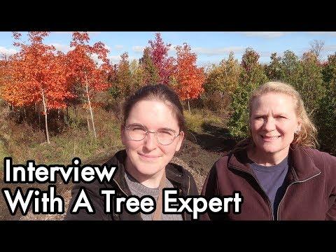 Tree Garden 02: Interview with an Expert, Transplanting, Watering, Species, Swartz Nurseries Kenosha