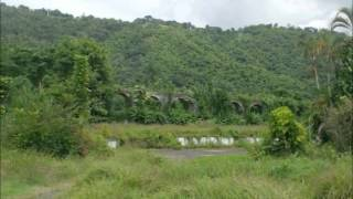 Investment opportunity in Jamaica