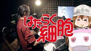 【はたらく細胞】ClariS - CheerS フルを叩いてみた / Hataraku Saibou ED full Drum Cover