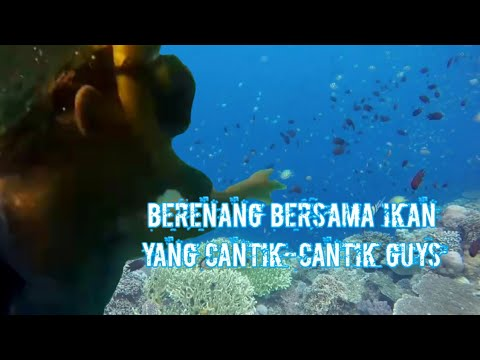 my-trip-vlog---menikmati-keindahan-alam-pantai-lubang-buaya-morella-ambon