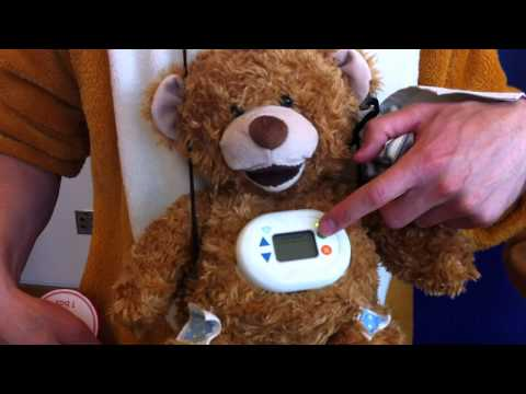 Meet Jerry the Bear, an Interactive Bear with Type 1 Diabetes