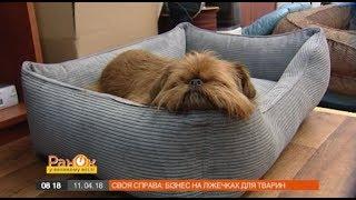 Украинская пара сделала успешный бизнес на кроватях для животных