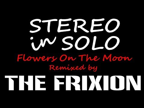 STEREO in SOLO 'Flowers on the moon' (The Frixion Extended Remix)
