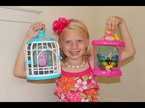 Little Live Pets Bird & Butterfly Playtime Review