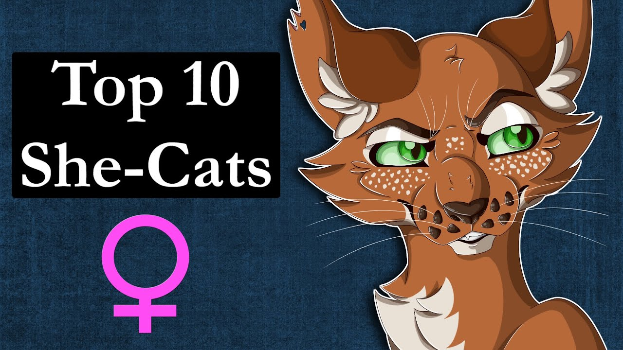 Top 10 She-Cats in Warrior Cats