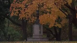 """Отрывок из фильма """"Осень в Нью-Йорке"""""""