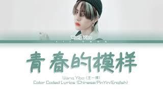 王一博(Wang Yibo)- 青春的模样(So Young And So Flowering) [Chinese/Pinyin/English Lyrics/English Sub]