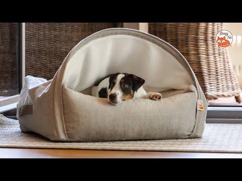 So waschen Sie Ihr Sleepy Fox® Kuschelhöhle Hundebett