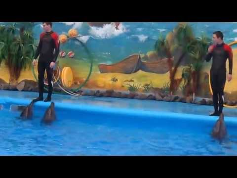 дельфинарий Немо в Ереване-Former Yerevan Dolphinarium Nemo