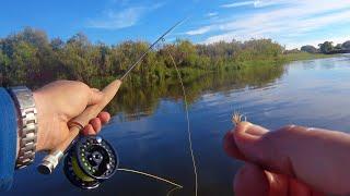 Рыбалка на реке Мурин притоке Куды Нахлыст часть 2