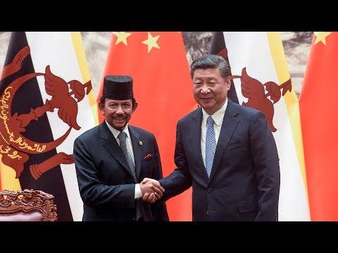 Chinese President Xi Jinping meets Brunei head of state Sultan Haji Hassanal Bolkiah