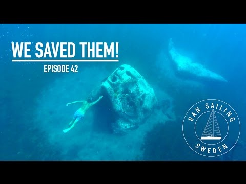 We saved them! - Ep. 42 RAN Sailing