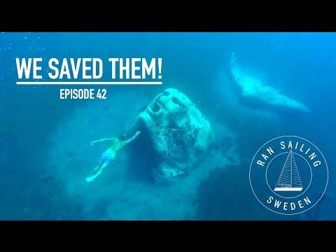 We saved them! - Ep. 42 RAN Sailing