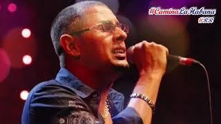 DALE PLAY - PAULITO F.G. (EN VIVO - 22 ANIVERSARIO) | CAMINA LA HABANA by RENZO REY #RR Video