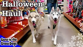 Dogs Go Shopping at PetSmart for Halloween | Petsmart Halloween Haul for Dogs