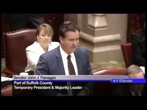 Senate Majority Leader John Flanagan's remarks on C.O.'s