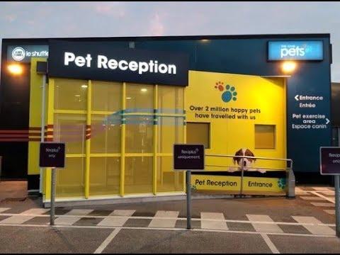 How to get a pet passport uk to europe