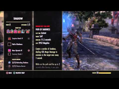 Eso Nightblade Dmg Build
