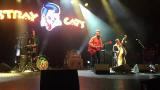 Stray Cats - Cat Fight (Over A Dog Like Me) - Manchester