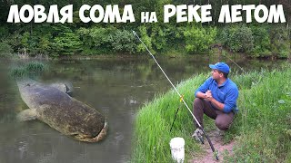 ПОЙМАЛИ СОМА под ЗАВАЛАМИ МОСТА Рыбалка на СОМА с берега Снасть для ловли сома