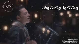 رايحين على الشر تجروا طارق الشيخ