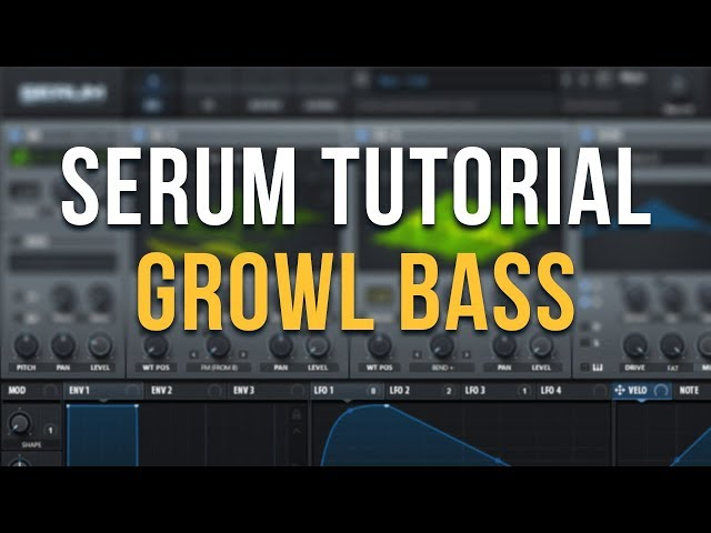 Spotlight on Serum: Pyramind Workshop and Free Tutorials